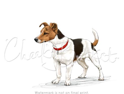 Xtra Dog Fleece Walking Harness Size X Small Xs